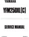 Yamaha Bear Tracker 250 Service Manual
