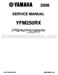 Yamaha Raptor 250 Service Manual