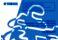 Yamaha Raptor 250 Owner`s Manual